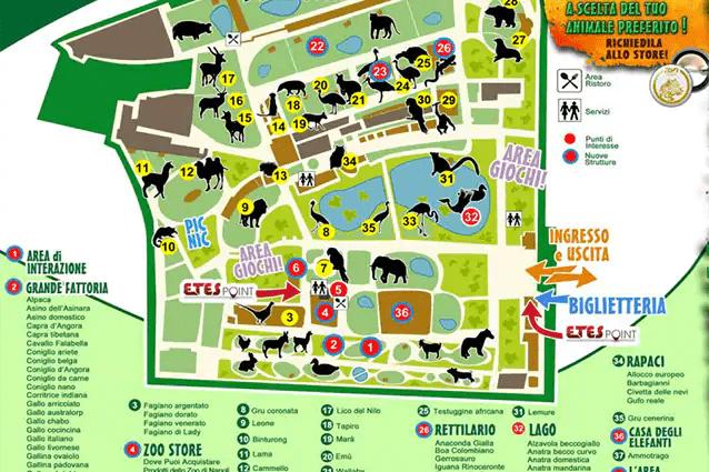Zoo di Napoli. Campi estivi e feste tra animali e verde